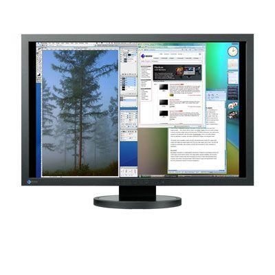 ������� (old) Eizo FlexScan SX3031 Wide