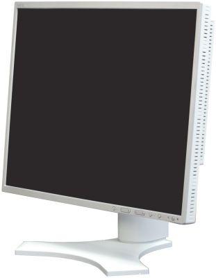 Монитор (old) Nec MultiSync 1990FXP