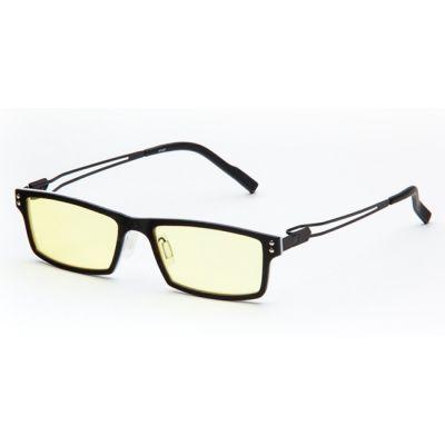 ���� SP Glasses AF071 titanium (�����-�����) AF071_BW