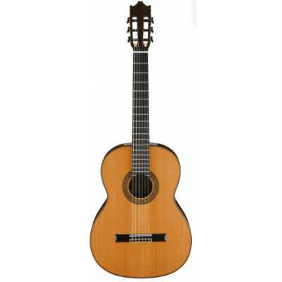 Акустическая гитара Ibanez G300NT