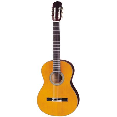 Классическая гитара ARIA AK-20 N