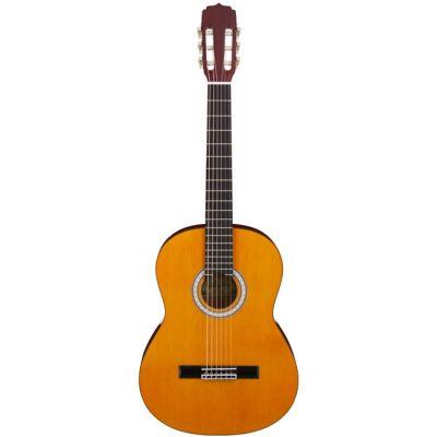 Классическая гитара ARIA AKN-15 N
