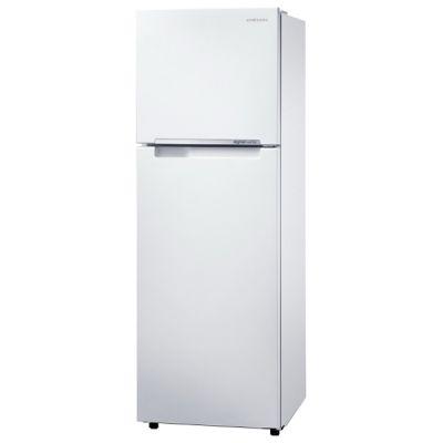 Холодильник Samsung RT25FARADWW RT25FARADWW/WT