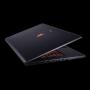 Ноутбук MSI GS70 2PE-460RU