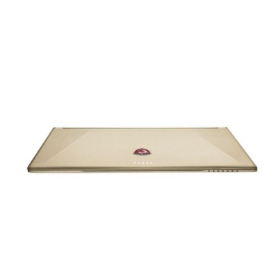 ������� MSI GS60 2QE-032RU (Ghost Pro 3K) Gold Edition 9S7-16H515-032