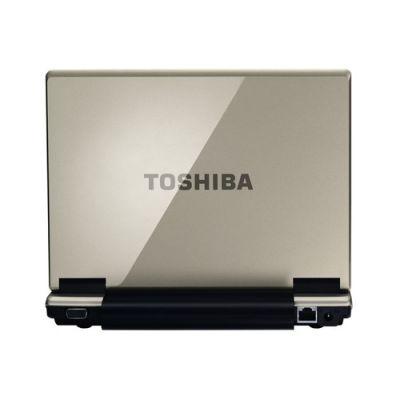 Ноутбук Toshiba NB100-11B (Champagne Gold)
