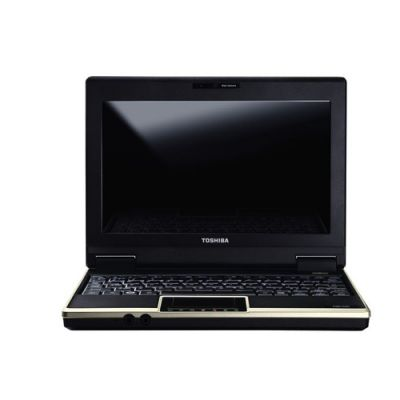 Ноутбук Toshiba NB100-127 (Champagne Gold)