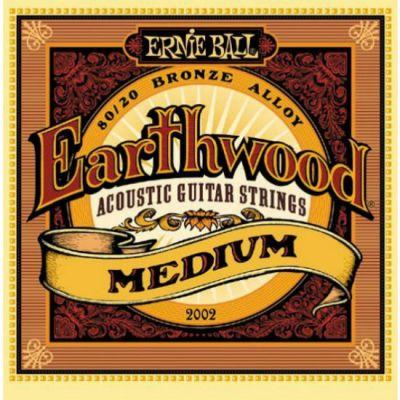 Струны Ernie Ball 2002