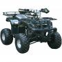 Квадроцикл Wels ATV WELS125 LADOGA (зеленый)