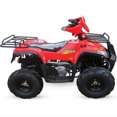 Квадроцикл Wels ATV HS110 STORM (красный)