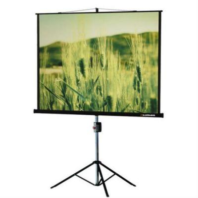 Экран Lumien Master View 220x220 см LMV-100111