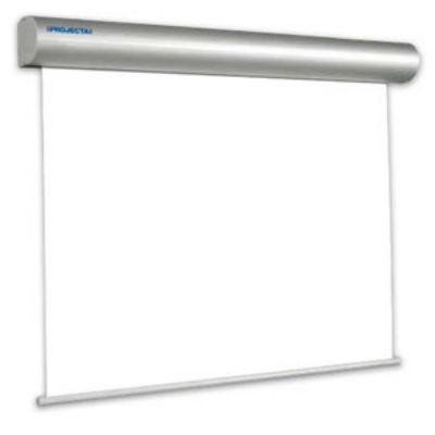 Экран Projecta Master Electrol 400х500см Matte White 10130240