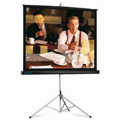 """����� Projecta Picture King 162�213�� (100"""") Matte White 10430035"""
