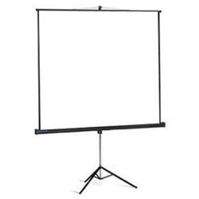 Экран Projecta Professional 152x152см Matte White 10430108