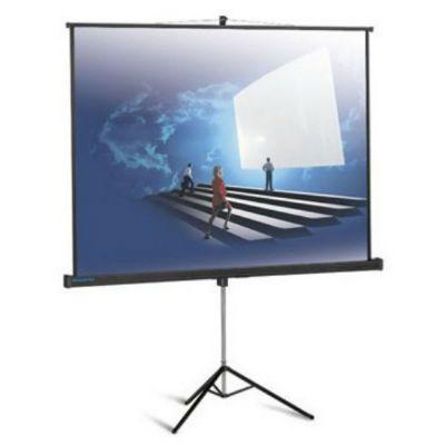Экран Projecta ProView 152x152см Matte White 10430112