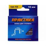Практика Скобы для степлера, 10 мм, тип 53, толщина 0,74 мм, ширина 11,4 мм, (1000 шт) коробка 037-305
