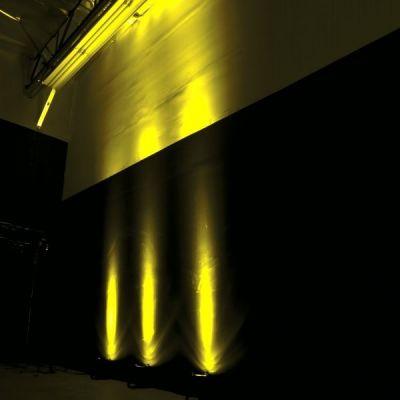 Adj Прожектор PAR LED 46hp Led Black