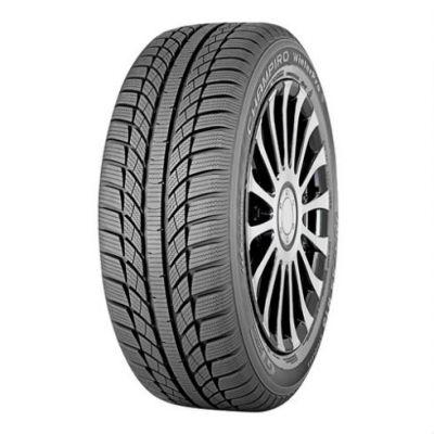 Зимняя шина GT Radial 205/50 R17 Champiro Winterpro Hp 93V A605