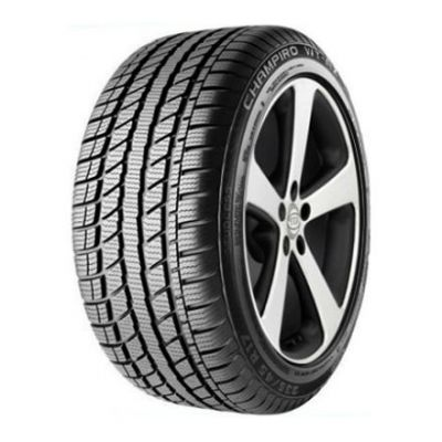 Зимняя шина GT Radial 205/50 R17 Champiro Wt-Ax 93H B128