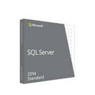Программное обеспечение Microsoft SQL Svr Standard Edtn 2014 English non-EU/EFTA DVD 10 Clt 228-10254