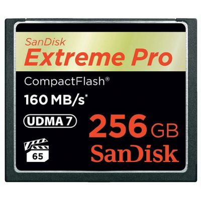 Карта памяти SanDisk Compact Flash 256Gb Extreme Pro 160MB/s SDCFXPS-256G-X46