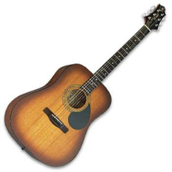Акустическая гитара Greg Bennett D1/BS