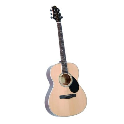 Акустическая гитара Greg Bennett GA100S/N