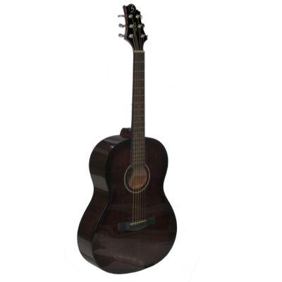 Акустическая гитара Greg Bennett ST91/BS