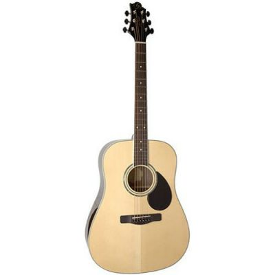 Акустическая гитара Greg Bennett GD100RS/N