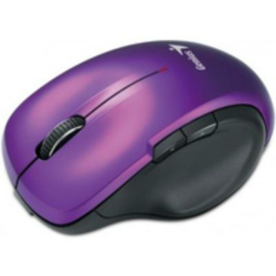 Мышь беспроводная Genius DX-6810 фиолетовый
