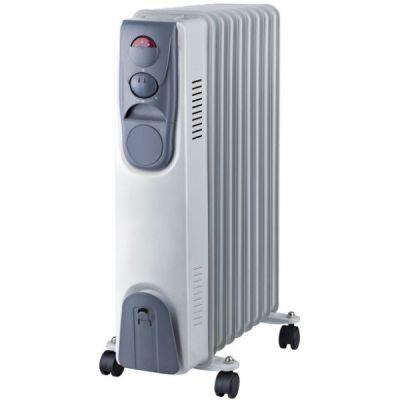Радиатор Oasis BT-20