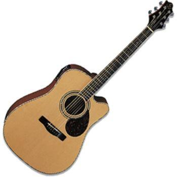Электроакустическая гитара Greg Bennett D5CE