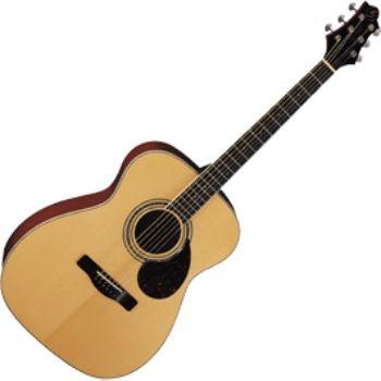 Акустическая гитара Greg Bennett OM5
