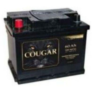 Автомобильный аккумулятор Cougar STD 60 Евро о.п. 9165317