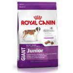 ����� ���� Royal Canin GIANT JUNIOR ��� ������ 8-24 ���. 4�� 197040