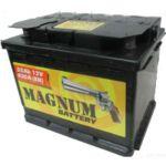 Автомобильный аккумулятор Magnum 55 о.п. 9177694