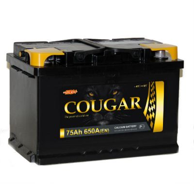 Автомобильный аккумулятор Cougar 75 п.п. 9177330