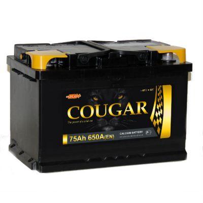 Автомобильный аккумулятор Cougar 75 о.п. 9177331