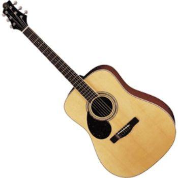 Акустическая гитара Greg Bennett D5/LH