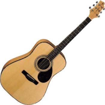 Акустическая гитара Greg Bennett D9