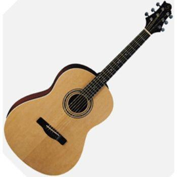 Акустическая гитара Greg Bennett ST92