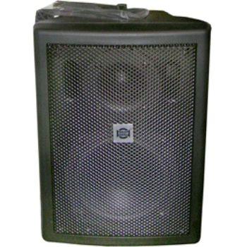Акустическая система Show Двух полосная акустическая система CSB50/CV-BK