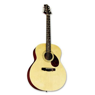 Акустическая гитара Greg Bennett GJ100S/N