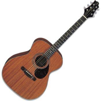 Акустическая гитара Greg Bennett OM3