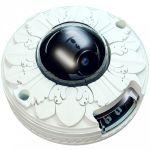 Камера видеонаблюдения ActiveCam MYAC-D4101IR1 Лепнина