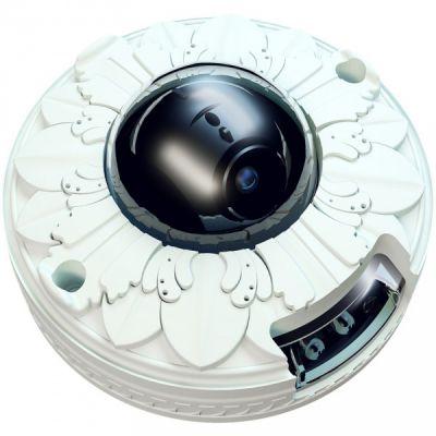 Камера видеонаблюдения ActiveCam MYAC-D4121IR1 Лепнина