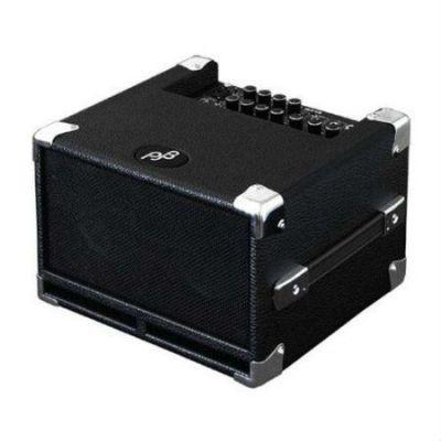 Комбоусилитель Phil Jones Bass басовый транзисторный Bass Cub BG-100