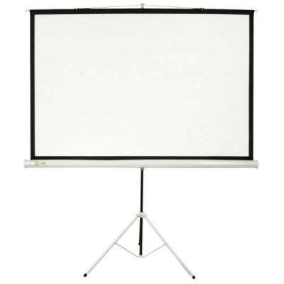 Экран Cactus 127x127см Triscreen 1:1 напольный рулонный белый (CS-PST-127X127)