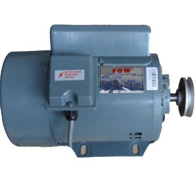 Juck Электродвигатель безфрикционный FDM 400W/220V(380V), 1425 об/мин индукционный
