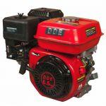 Двигатель DDE бензиновый четырехтактный 168FB-S20 (20.0 мм, 6.5 л.с., 196 куб.см., фильтр-картридж, датчик уровня масла)